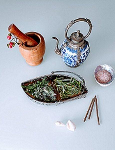 צמחי מרפא לבריאות מיטבית